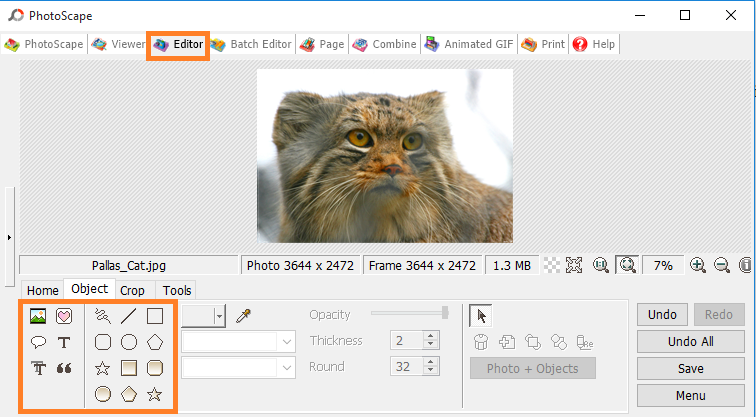 Photo effects tab in PhotoScape