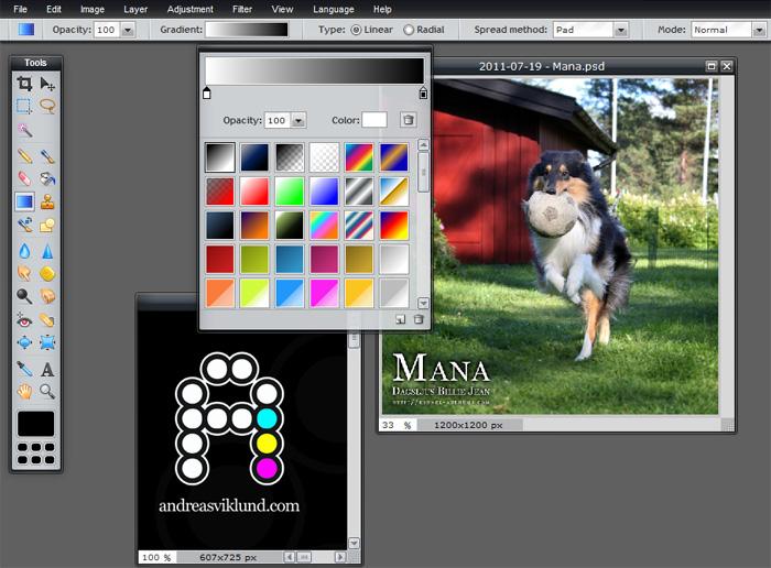 Pixlr Editor: Fun and Simple Photo Editing Online - FBlog: www.freemake.com/blog/pixlr-editor-fun-powerful-photo-editing-online