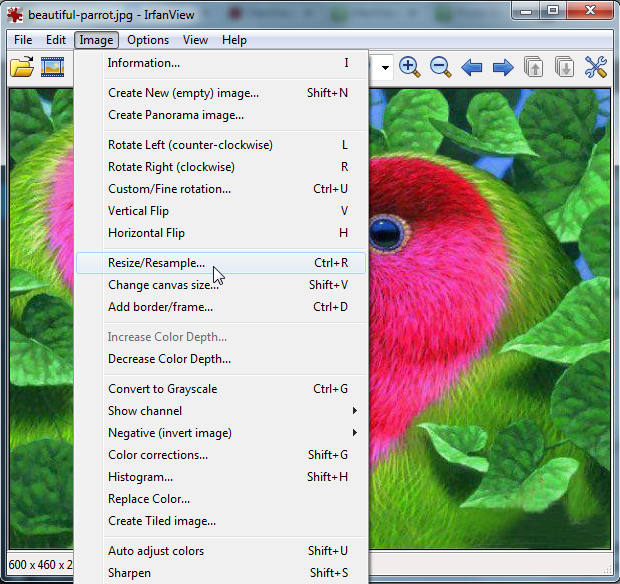 resize with irfanview