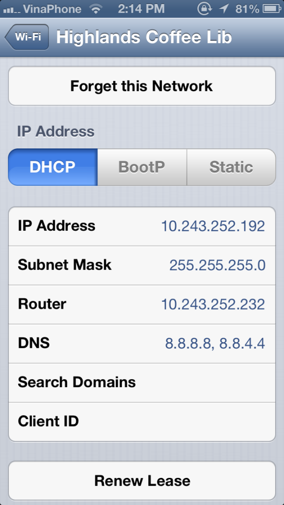 update DNS settings iphone